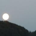 2 Mond kugeln P 1040448o